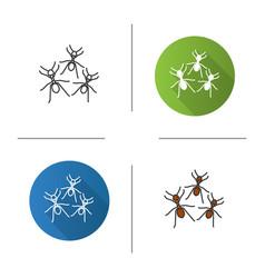 Ants icon vector