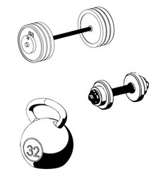 barbell and dumbbell on a white vector image