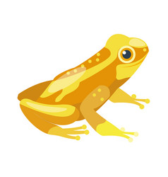 frog cartoon tropical yellow animal cartoon nature vector image