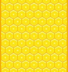 honeycomb cell pattern vector image