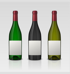 set of 3 realistic wine bottles with blank vector image