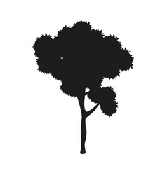 silhouette tree plant natural design image vector image vector image