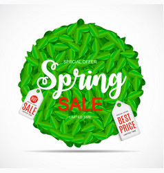 spring sale cute background with green leaves vector image