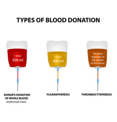 Types of donors blood world blood donor day vector