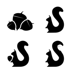 set of squirrels and nuts design template vector image