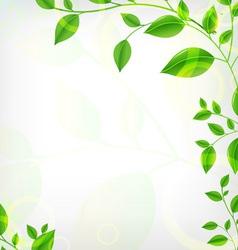 Vines Background vector image