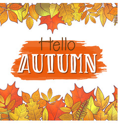 hello autumn borders vector image