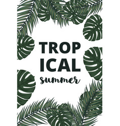 summer banner with palm leaves vector image