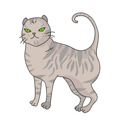 british shorthair icon in cartoon style isolated vector image