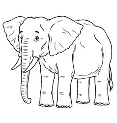 cartoon african elephant vector image