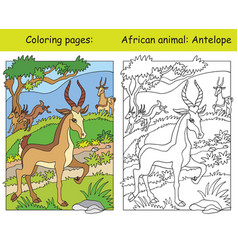 Coloring and color antelope vector