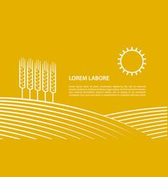 Farmer field and ears of wheat vector