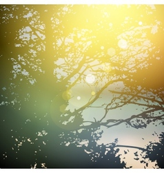 summer design forest trees nature green wood vector image