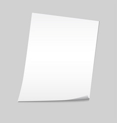 paper on a gray background mock up vector image