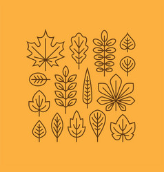 autumn leaves line icons set vector image vector image