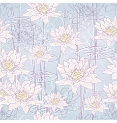 water lily flowers vector image