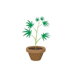 Cannabis plant in a pot icon cartoon style vector image