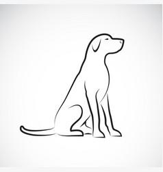 a labrador retriever dog on a white background vector image vector image