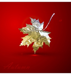 a silver metallic foil maple leaf on red vector image