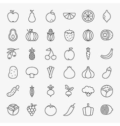 Fruit Vegetable Line Art Design Icons Big Set vector image