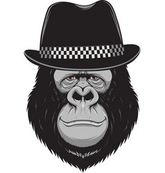 monkey with a hat vector image