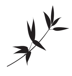 silhouette bamboo leaves on white background vector image