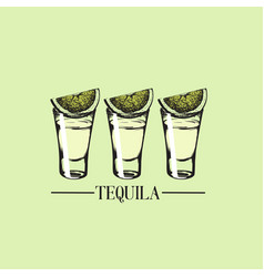 Tequila glasses made in hand drawn style template vector
