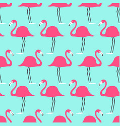 tropical birds flamingo on a turquoise background vector image vector image