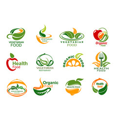 vegetarian and vegan organic food icons vector image