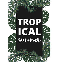 Summer banner with palm leaves vector