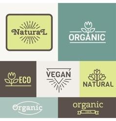 Fresh And Natural Food vector image