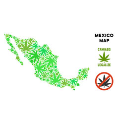 Royalty free cannabis leaves composition mexico vector