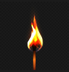 stock realistic burning match vector image