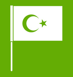 turkish flag icon green vector image