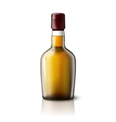 Blank realistic whiskey bottle isolated on grey vector