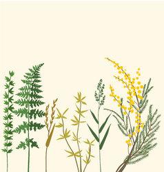Botanic herbarium vector
