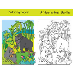 coloring and color gorilla vector image