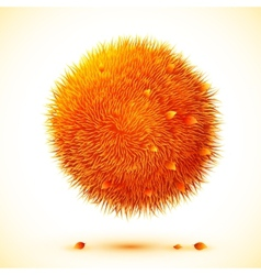 Fluffy orange ball with autumn leaves vector
