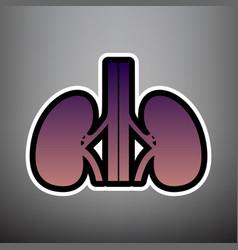 human anatomy kidneys sign violet vector image