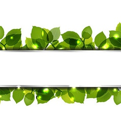 Leafs And Paper Banner vector image