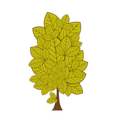 colorful leafy tree plant with several leaves vector image vector image