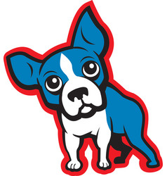 Boston terrier vector