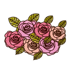 Color pencil drawing of roses bouquet decorative vector
