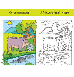 Coloring and color hippo vector