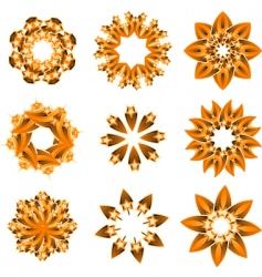 floral and ornamental elements vector image