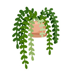 Hygge potted ivy plant cozy lagom scandinavian vector