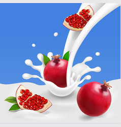 Milk or yogurt splash with pomegranate vector