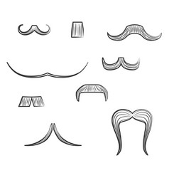 set with diverse mens moustache shapes vector image
