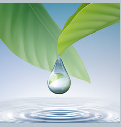 shiny water drop vector image