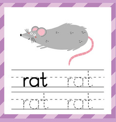 tracing worksheet with word rat learning material vector image